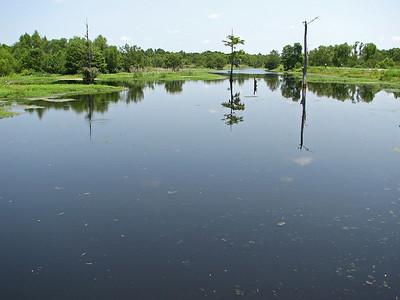 Champion Lake - Trinity River NWR