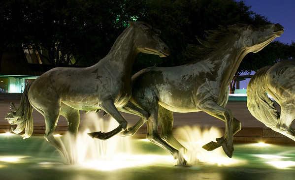 Las Colinas Mustangs