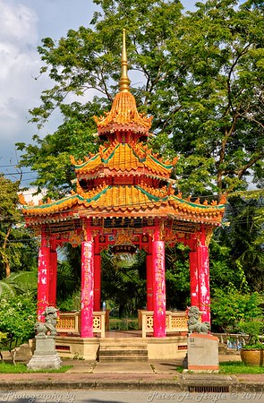Thailand  09 - Oct 2017 (Lumpini Park)