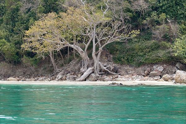 Mosquito Island, Phi Phi Islands