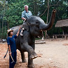 At an elephant camp outside Chang Mai we got a chance to ride on the head of an elephant for a short ways.  It was harder to do than it looks and a bit on the scary side.