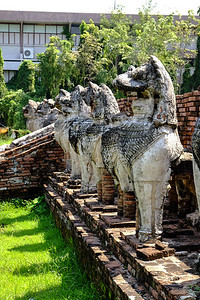 50 lions surround the ruins of the original stupa.