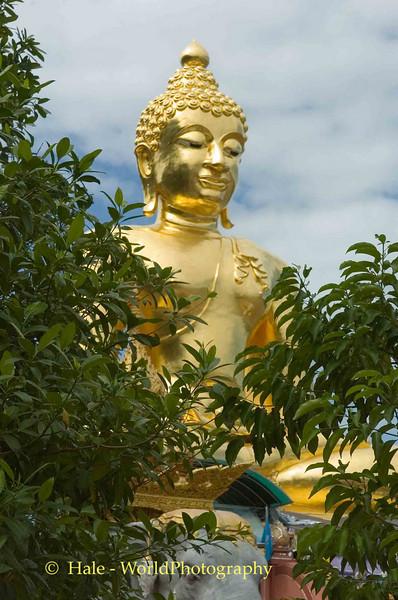 Golden Buddha in Sop Ruak, Golden Triangle Area, Thailand