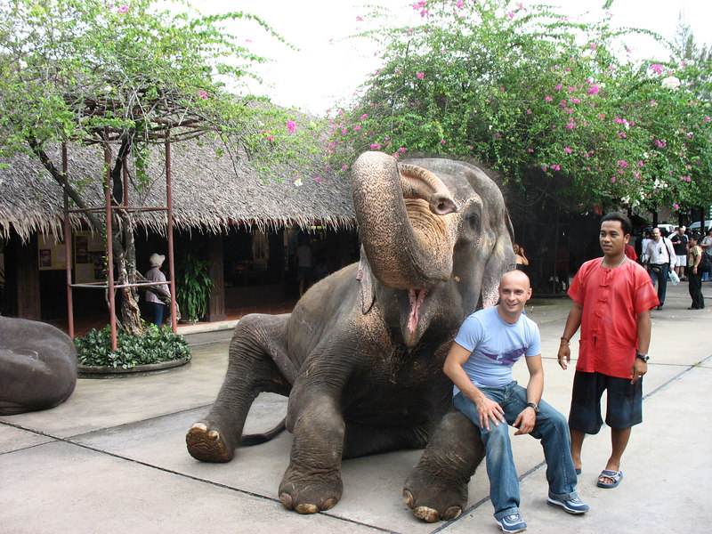 Someone posing with an elephant.
