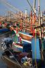 Squid boats (Hua Hin)