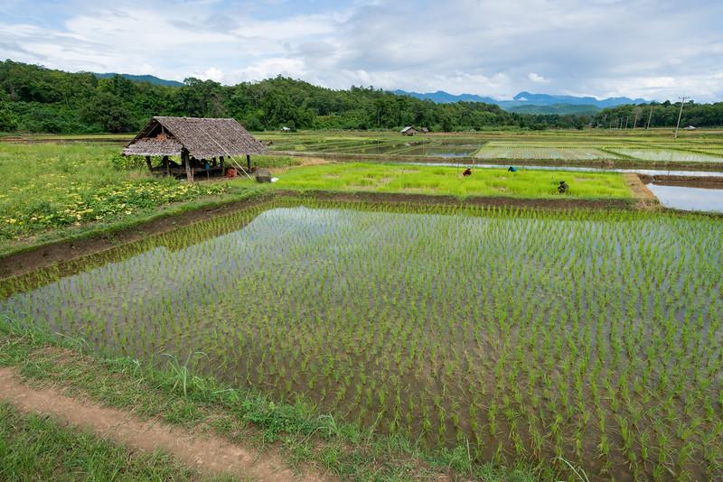 THAI Mai Hong Son Province -107