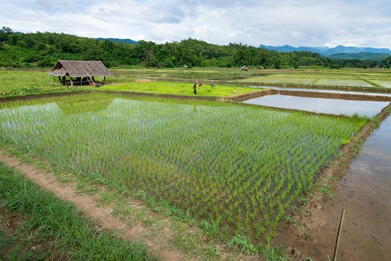 THAI Mai Hong Son Province -112