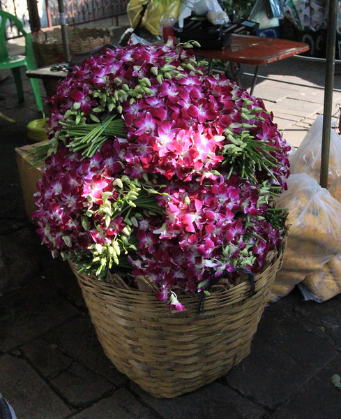 Bushels of orchids, and inexpensive too