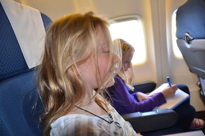 Wellington Auckland Flight