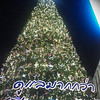 Thai Christmas tree