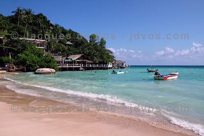 Sharks Bay - Koh Tao