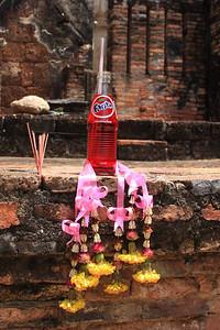 Offering for Buddha
