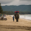 Elephant in a beach