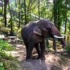 Doi Suthep Elephant