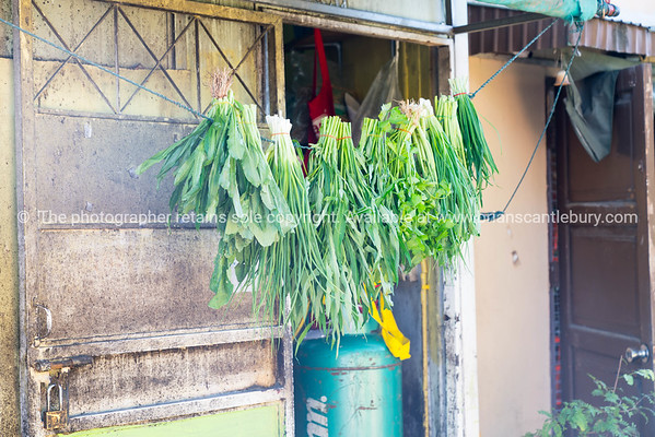 Herbs and vegetables hanging at rear of Asian  restaurant.