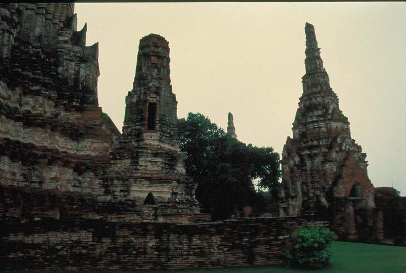 thai205