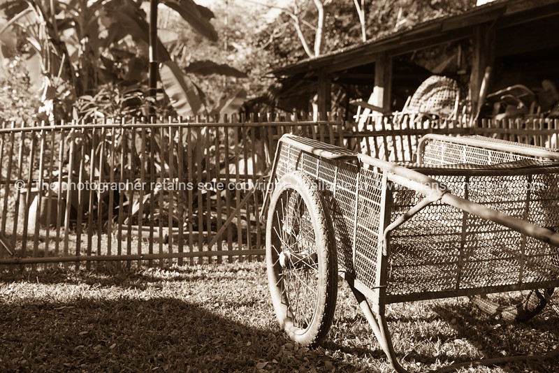 Old pushcart on lawn in front of old bamboo fence and shed