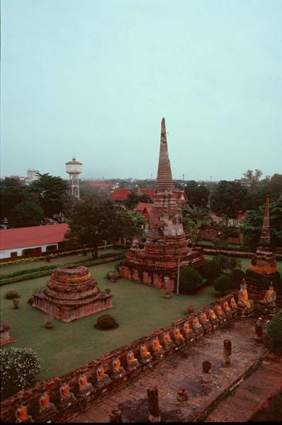 thai304