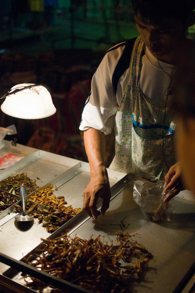 A street vendor sells various fried insect snacks.