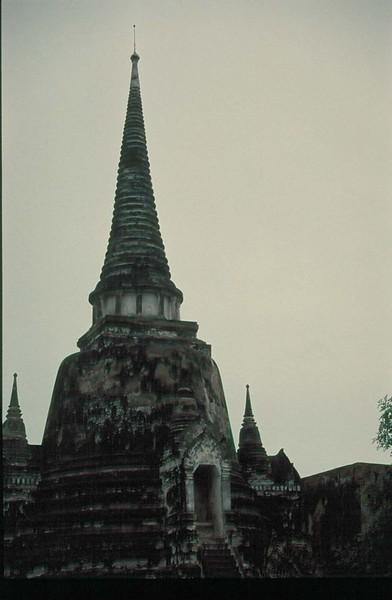 thai213