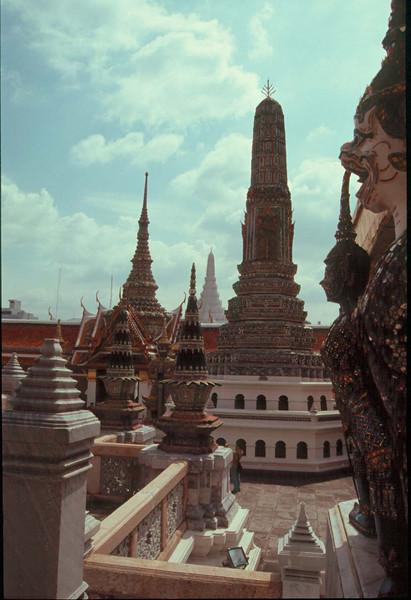thai504