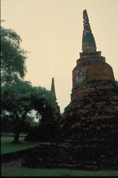 thai221