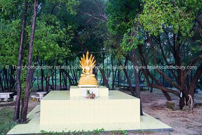 Buddha shrine surrounded by trees
