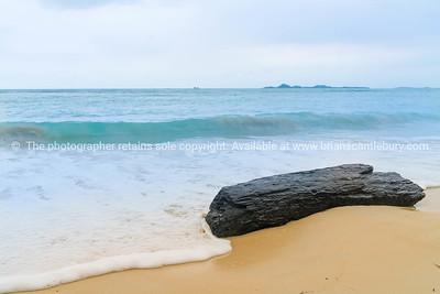 Log washed up on shore