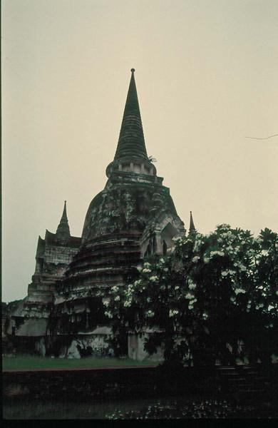 thai214