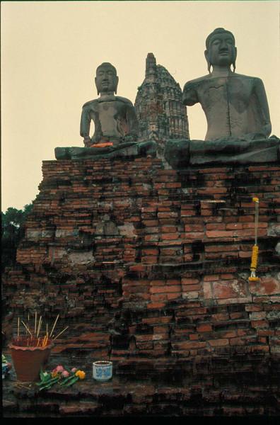 thai209