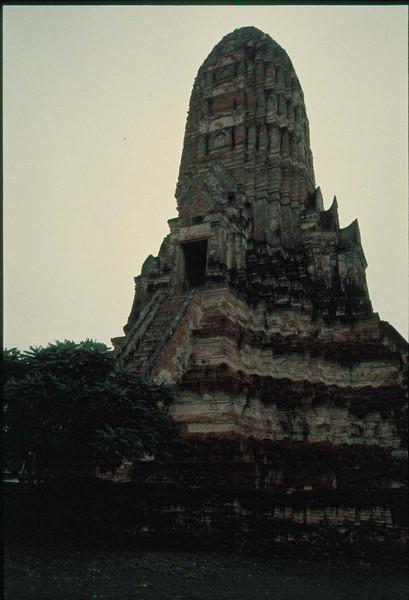 thai204