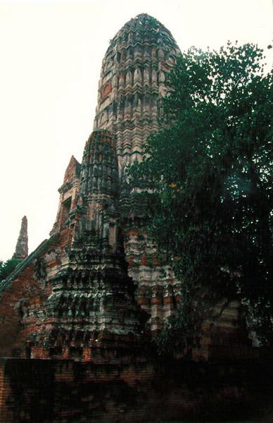 thai132