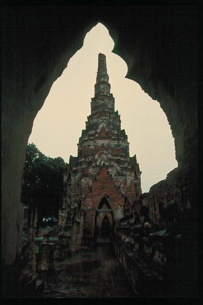 thai207