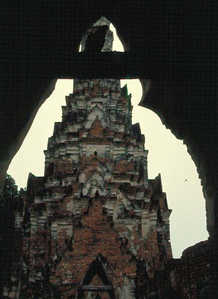 thai206