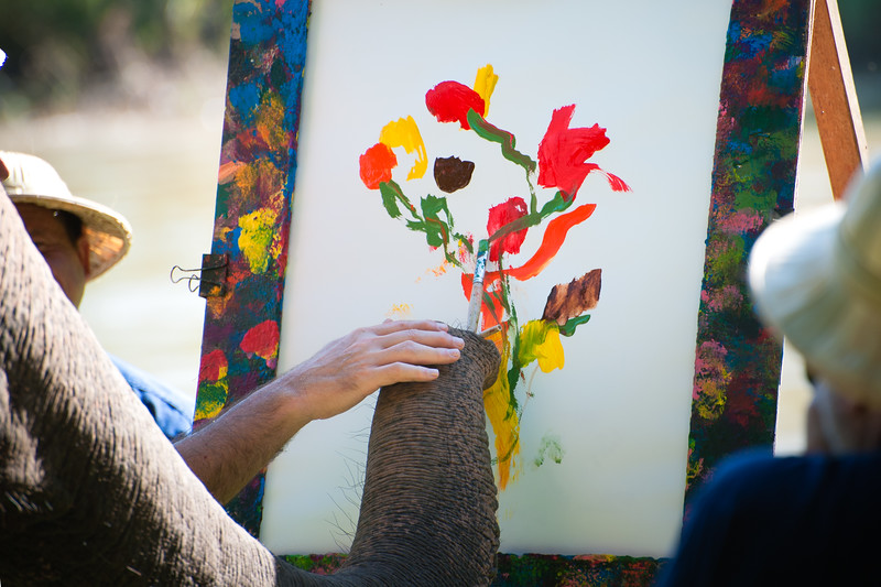 Tong (the elephant) painting a bouquet