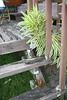 Front porch #4