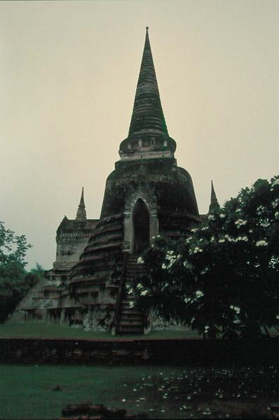 thai216