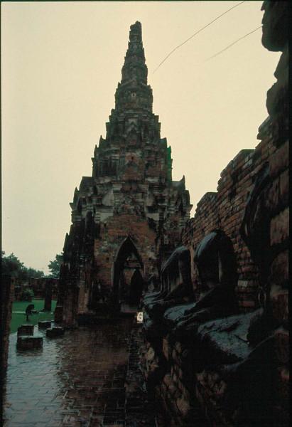 thai203