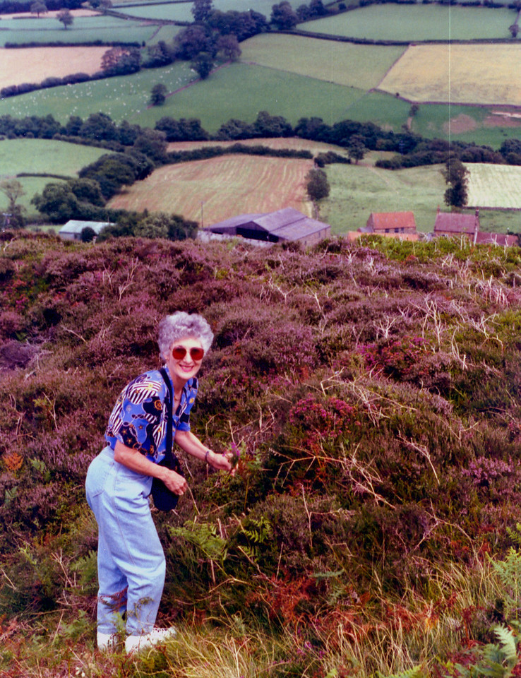 1997-07-30 Where Betty got her heather that hangs on the wall in the dining room.