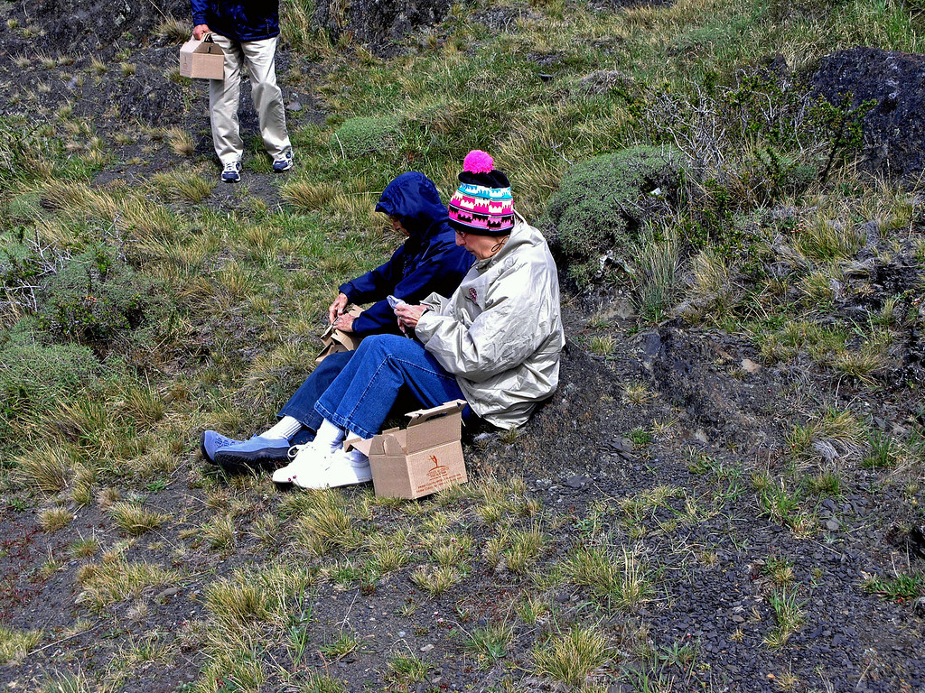 Oct 26.  We had a box lunch today, and we ate it on the cold windy road to Torres del Paine National Park.  We had another reason for being here.  After lunch we will hike up to a waterfall.