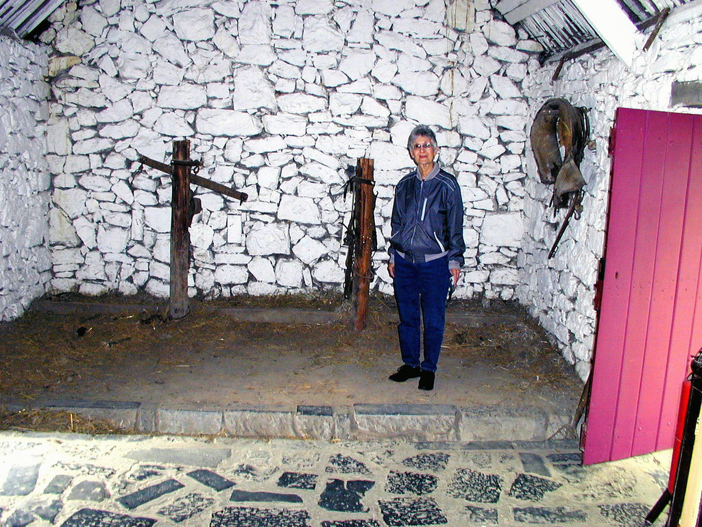 "May 15.  Inside the Byre Dwelling, ""an example from County Mayo of a dwelling occupied by both humans and their milking cows.""  Built on a slant so waste from animals run into the ""trench"" and can be washed out.  The family live on the camera side of the trench."