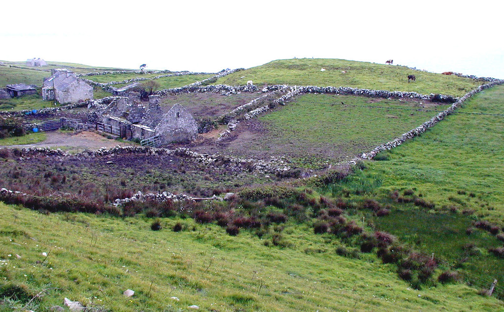 May 14.  An abandoned farm house, but the surrounding stone fenced-in field had cattle grazing.