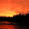 1 02a Tanana River dawn, 930am, Nov 27, 1972