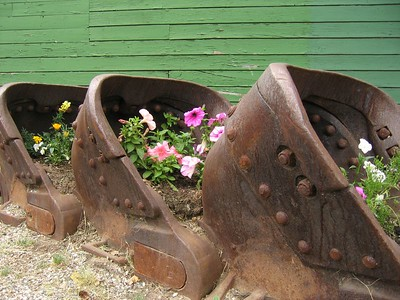 Mining cars and flowers in Fairbanks, Alaska