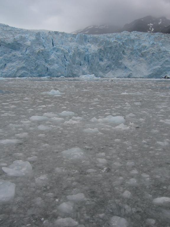 Iceberg flow in Kenai Fjords, Alaska