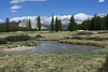 From Tuolomne Meadows you have beautiful views of the surrounding mountains