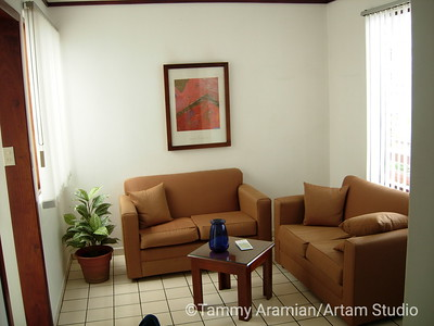 my apt's living room area