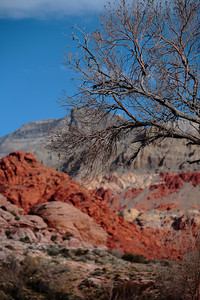 Red Springs, Red Rock Canyon, Nevada