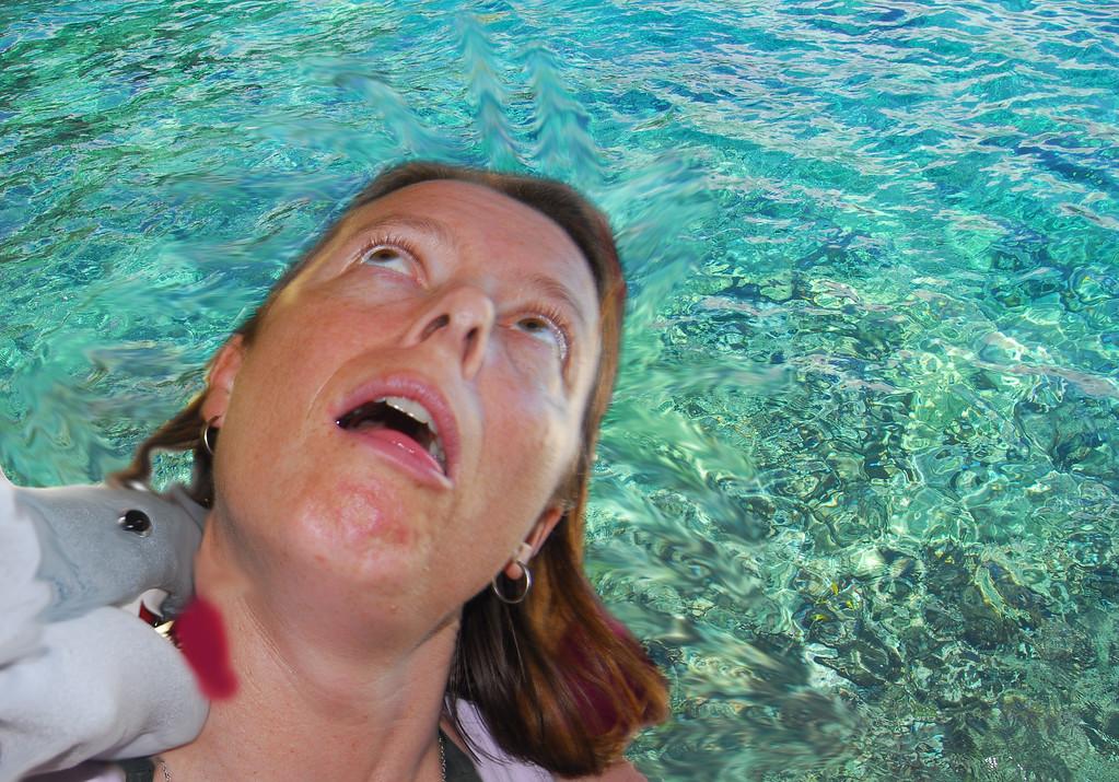 "Sarah getting ""sharked"" in Kealakekua Bay."