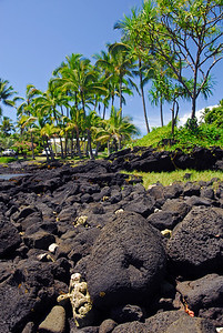 It is all lava rocks and palm trees here!